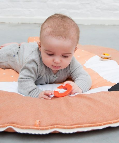 Activity play mat with arches - Mr. FOX 2